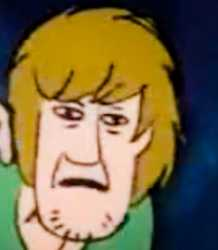 confused shaggy