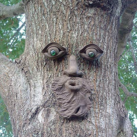 excited tree face