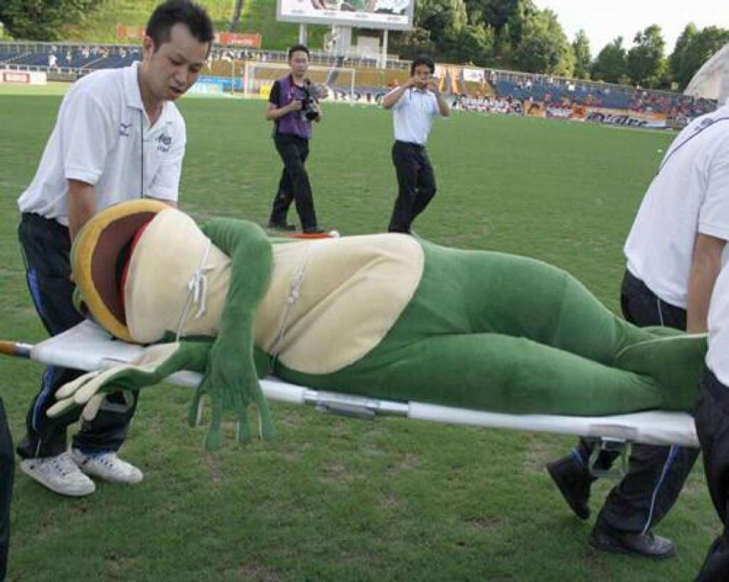frog on stretcher