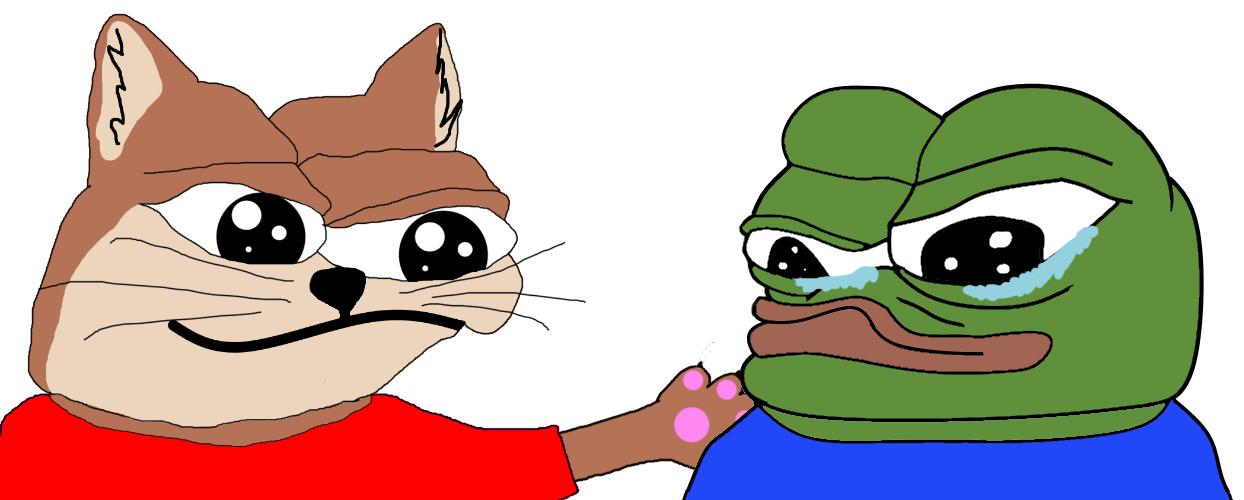 Cat Meme Quote Funny Humor Grumpy Kitten Sad Love Mood Wallpapers